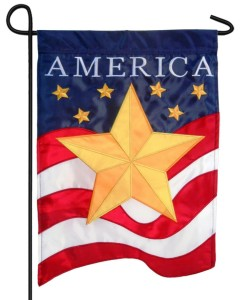 gold star and flag