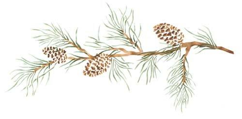 pine cone border
